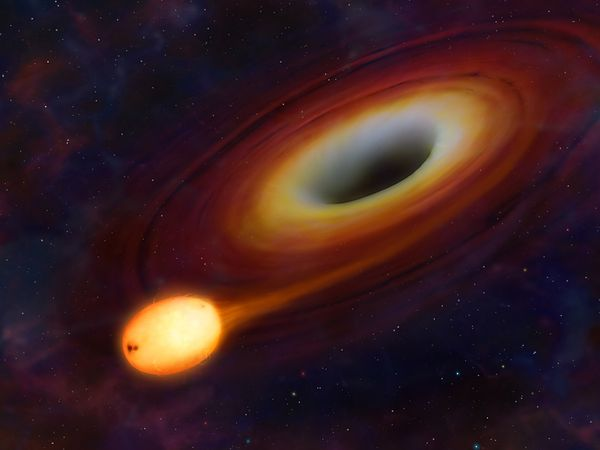 And then screaming in terror when we find massive stars being devoured by huge black holes.