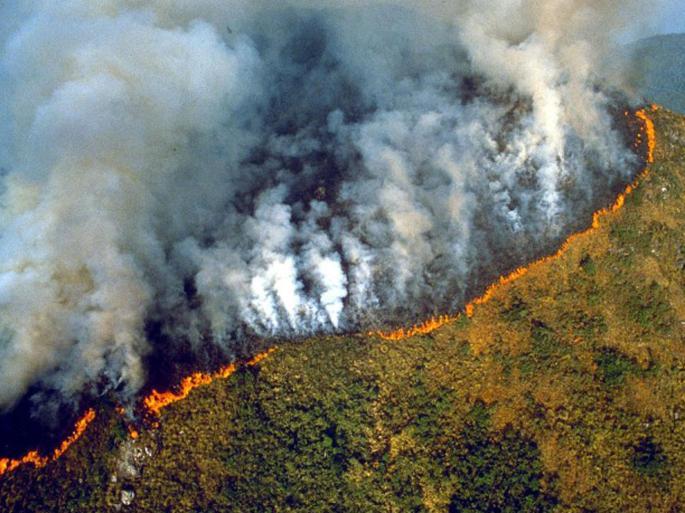 Earth being burned.jpg